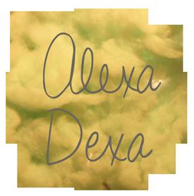 http://www.alexadexa.com/wp-content/themes/vortex